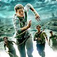 Maze Runner: run or die
